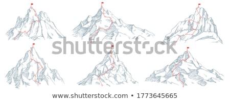 wandelen · parcours · bos · bergen · zomer · zonlicht - stockfoto © kawing921