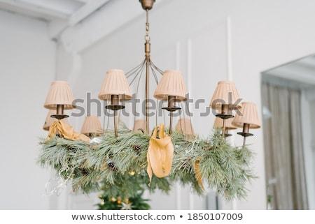 Klasik avize siluet kristal ışık ev Stok fotoğraf © mintymilk