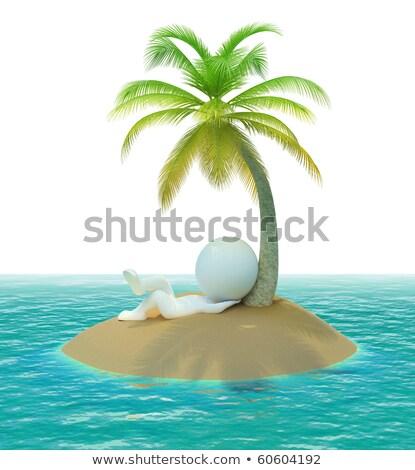 ストックフォト: 3D · 小 · 人 · 島 · 砂漠 · 画像