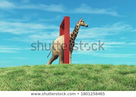 Foto stock: Elefante · caminhada · homem · estrutura · pessoas