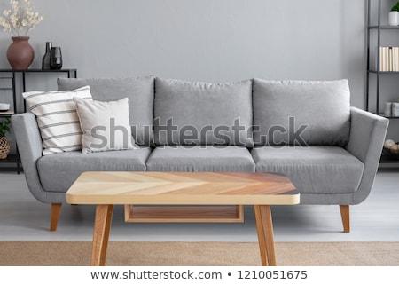 Sofá mesa de café parede relógio moderno luxo Foto stock © zzve