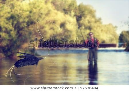 лет рыбак стержень ретро иллюстрация Сток-фото © patrimonio
