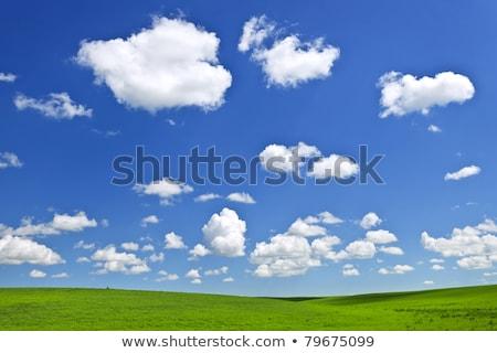 blu · verde · panorama · immagine · erba · abstract - foto d'archivio © mikko