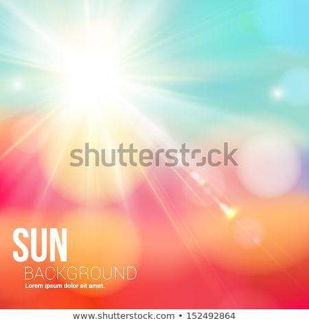 Tél nap fényes nap fellobbanás vektor Stock fotó © tuulijumala