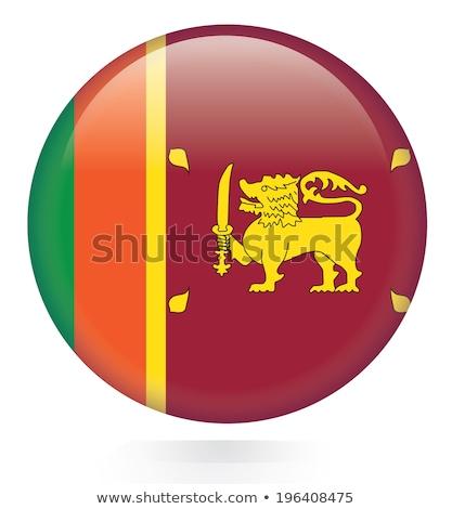 Gomb Sri Lanka térkép oroszlán kard vidék Stock fotó © Ustofre9