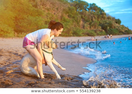 Stock photo: Dog afraid of the water