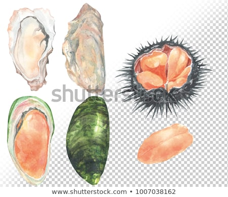 japanese style oyster and sea urchin stock photo © keko64