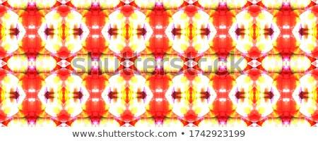 lace embroidery seamless pattern Stock photo © hayaship