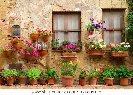家 · 庭園 · 表示 · 現代 · セメント · レンガ - ストックフォト © artjazz