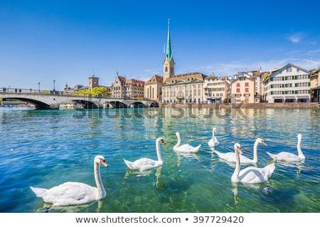 Beautiful view of Zurich and river Limmat, Switzerland Stock photo © lightpoet