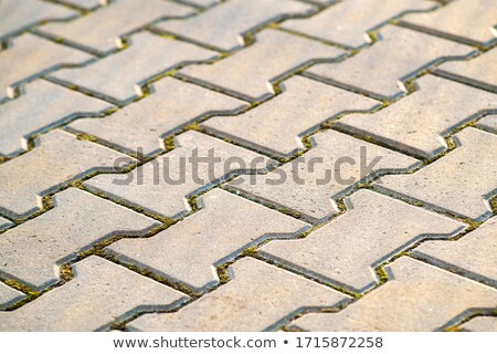 Decorative Gray Pavement Slabs. Stock photo © tashatuvango