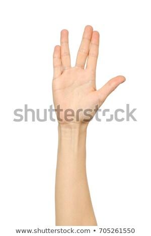 女性 手のひら 手 ジェスチャー 孤立した 白 ストックフォト © bloodua