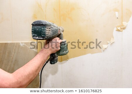Removing old wallpaper in the room stock photo © Valeriy