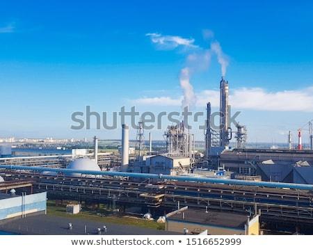 Plant in chemical fertilizer Stock photo © bdspn