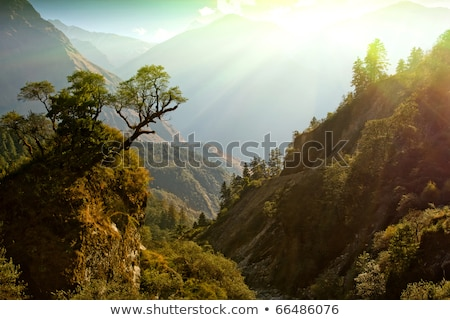 berceau · montagne · sunrise · paisible · tasmanie · coucher · du · soleil - photo stock © smithore