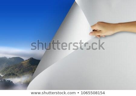 стороны пустая страница углу изолированный белый бумаги Сток-фото © cherezoff