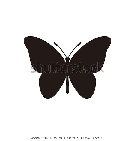 Butterfly icons Stock photo © bluering
