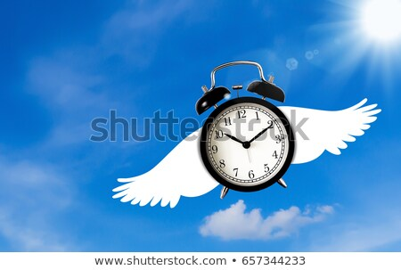Time Flies Stock photo © Lightsource