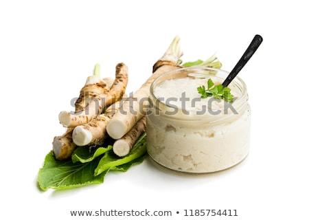 Chrzan sos kremowy porcelana łyżka żywności Zdjęcia stock © Digifoodstock