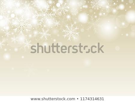 考え · クリスマス · 女性 · 思考 · 贈り物 · ショッピング - ストックフォト © lightsource