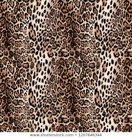 abstract texture of leopard skin Stock photo © tetkoren