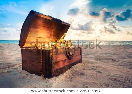 海 実例 水 魚 海 ストックフォト © adrenalina