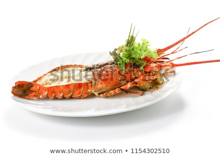 Lobster Front View Stock photo © Lightsource