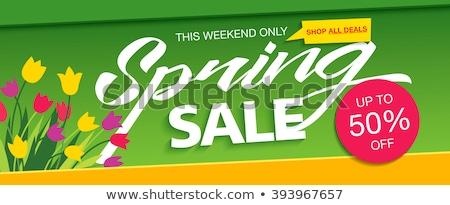 Hétvége különleges vásár szalag terv zöld Stock fotó © SArts