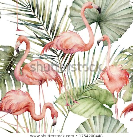 ピンク · 水 · 実例 · 鳥 · シルエット · 自由 - ストックフォト © adrenalina