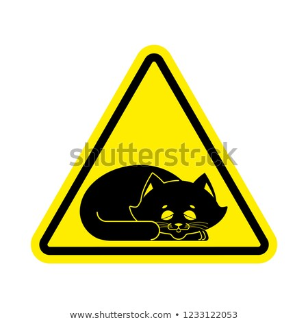 Attention dormir chat prudence animal jaune Photo stock © popaukropa