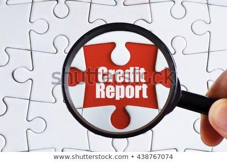 Credit Report on Binder. Blurred Image. Stock photo © tashatuvango