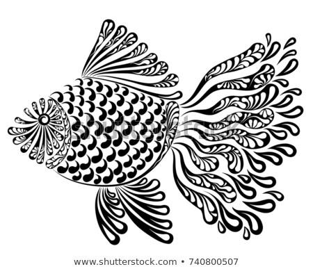 Decorative image of a fantastic fishnet fish Stock photo © ayaxmr