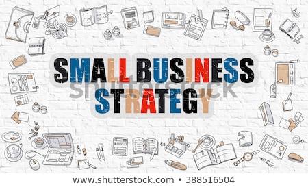 развивающийся бизнеса роста стратегия белый болван Сток-фото © tashatuvango