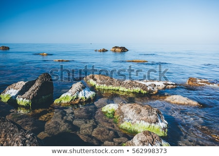 Azul mar manana luz ubicación lugar Foto stock © Leonidtit