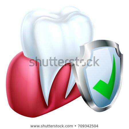 íny fog pajzs ikon orvosi fogászati Stock fotó © Krisdog