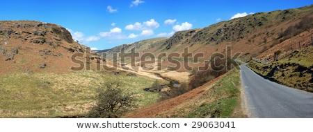 道路 · フィールド · 田舎道 · 雲 · 風景 · 夏 - ストックフォト © latent