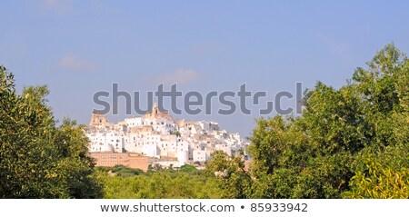 Beyaz şehir görmek Bina manzara seyahat Stok fotoğraf © Fotografiche