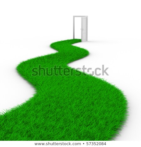 Road to door from grass. Isolated 3D image Stock photo © ISerg