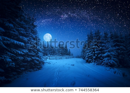 moon rising above the mountains at night stock photo © vapi