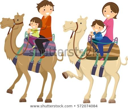 Család teve illusztráció lovaglás tevék sivatag Stock fotó © lenm