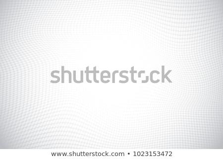 3d mesh halftone vector background on white Stock photo © m_pavlov