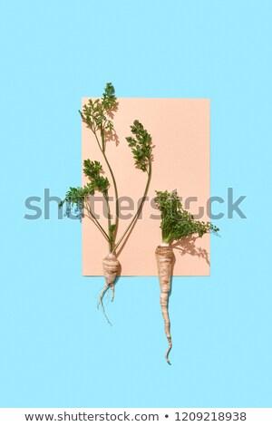 Stuk papier ingericht peterselie wortels groene bladeren Stockfoto © artjazz