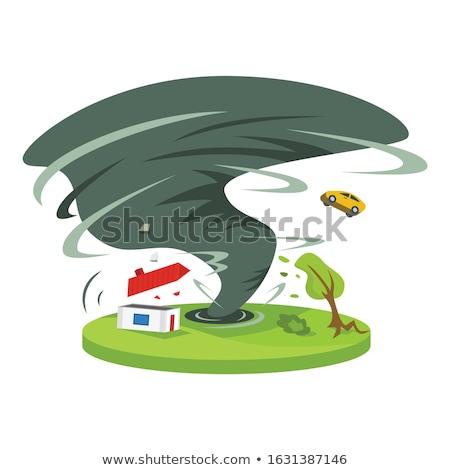 циклон · природы · иллюстрация · аннотация · дождь · искусства - Сток-фото © bluering