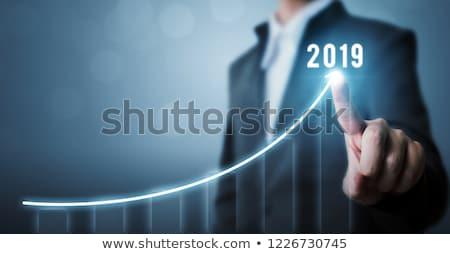 Jahr · Business · Wachstum · Grafik · Hand · Zeichnung - stock foto © ivelin
