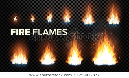 fire flames set vector different animation stages burning light with sparks effect fiery heat and stock photo © pikepicture
