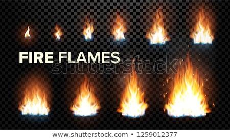 факел · пламени · реалистичный · огня · изолированный · прозрачный - Сток-фото © pikepicture