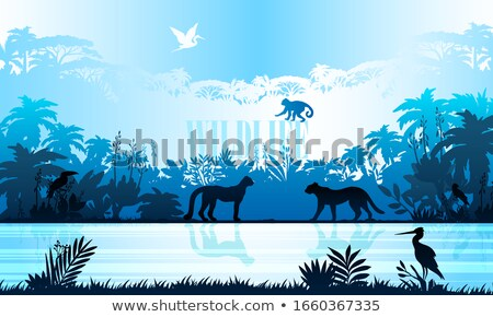 wildlife day poster of leopard in jungle stock photo © cienpies