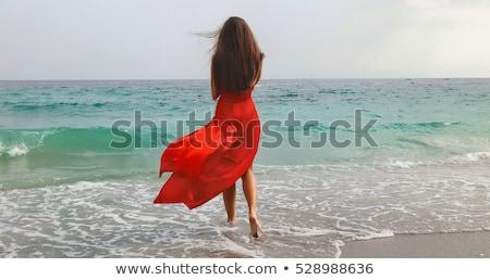 atraente · mulher · jovem · marrom · vestir · foto · em · pé - foto stock © bartekwardziak