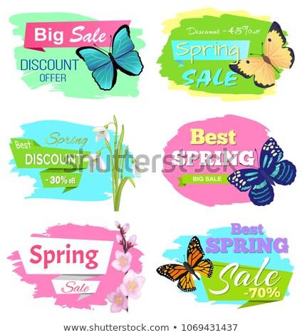 Stockfoto: Korting · voorjaar · verkoop · vlinder