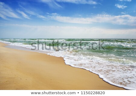 trópusi · vitorlázik · csónak · gyönyörű · tengeri · csillag · előtér - stock fotó © moses